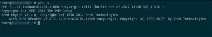 If everything went well so far, the new version of php should be visible from command line.