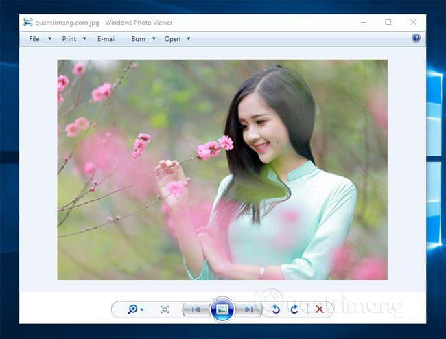 Windows Photo Viewer trên Win 10